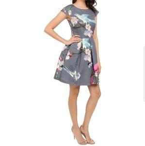 Ted Baker London Zaldana Fit and Flare Dress